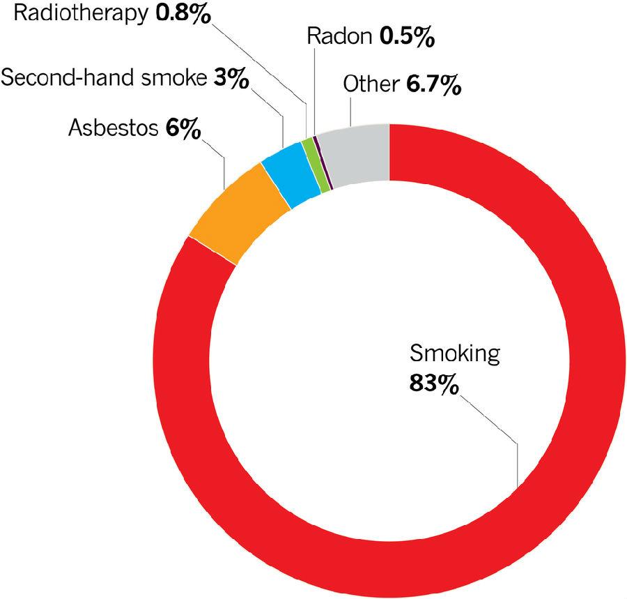 在南非   在中国,肺癌的影响攀升非常快,由于吸烟人数快速上升.
