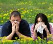 空气传播花粉与哮喘相关急诊高峰一致