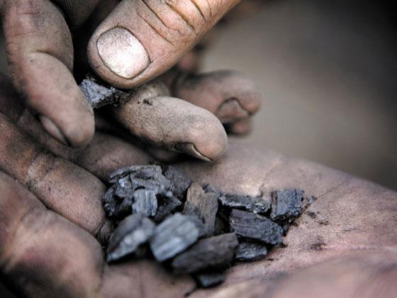 Nature:生物炭让土壤不再贫瘠