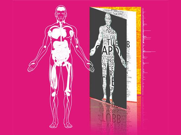 人类蛋白质组草图公布