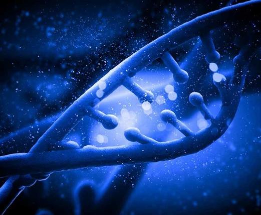 代谢组学:未来新方向