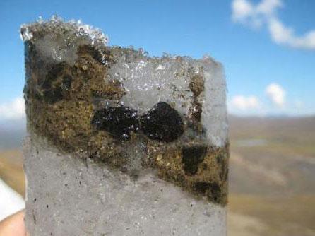 科学家复活700年前粪便病毒