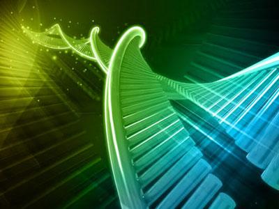 Cell:人体免疫主要取决于环境?