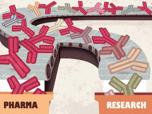 Nature:追寻抗体生产的标准化