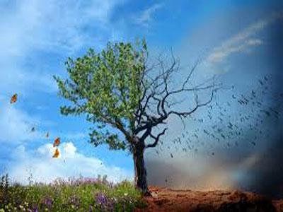生物多样性,莫到失去方恨晚