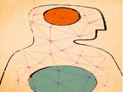 人类已经阻止不了肠道菌群了:连合成个5-羟色胺都受它们调控