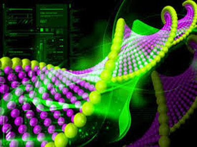 Nature:RNA分子的选择性标记