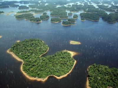 水电水坝显著减少热带森林生物的多样性