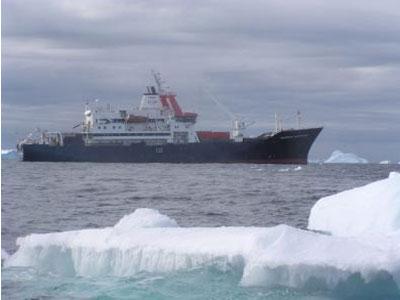 南大洋碳汇作用重新增强