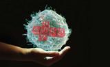Cell:新型小鼠模型技术或加速HIV疫苗的开发