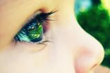 研究人员发现眼睛也能感染寨卡