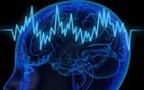 科学家发现HIV感染者认知能力下降的机制