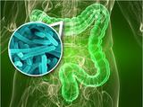 食品添加剂对肠道菌群的改变引起结直肠癌
