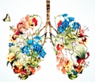 呼吸机相关性肺炎预防的思维导图