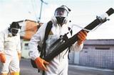 寨卡疫情不再是国际突发公共卫生事件