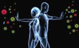 Nature医学:肝炎病毒的诡计,诱骗肝细胞破坏免疫防御