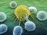 [ASH2016]CD19 CAR-T细胞疗法可有效治疗依鲁替尼难治性CLL