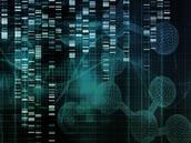专家预测,2017 年将出现复杂的在线健康数据攻击
