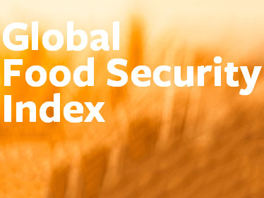 2013年《全球粮食安全指数报告》发布,中国排名第42