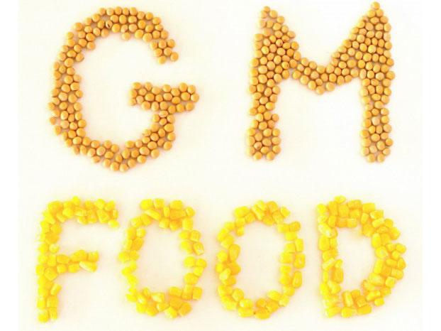 转基因作物创近代农业奇迹