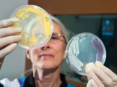 微生物学家走进美国白宫科技政策办公室