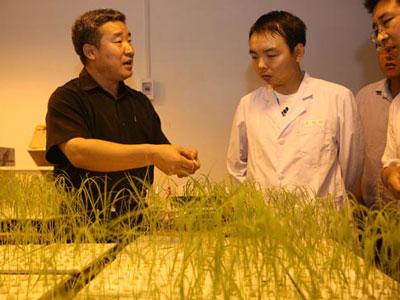 陈温福院士:生物炭将成最具潜力新兴产业