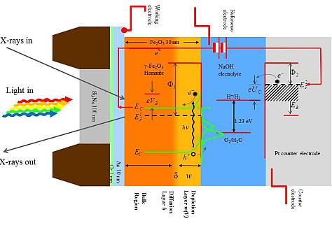 PNAS:人造叶片模拟光合作用