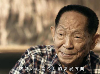 袁隆平:正研究把玉米碳四基因转到水稻中
