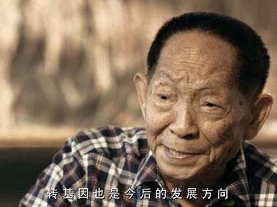杂交水稻先驱袁隆平支持转基因食品