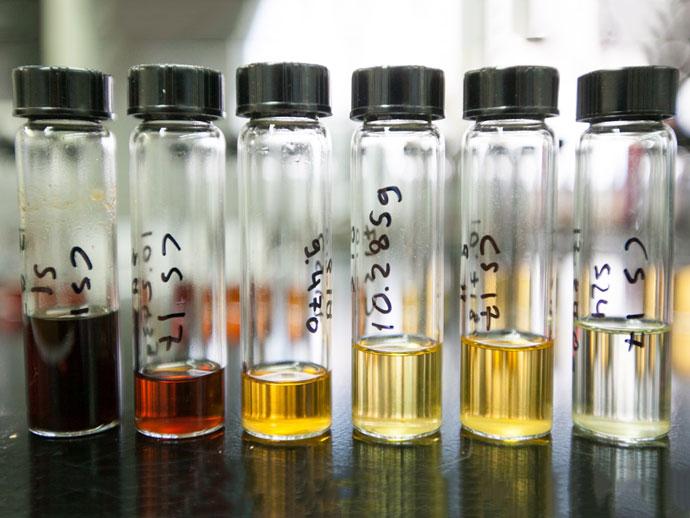 Science:糖诱导新技术推动生物燃料的发展