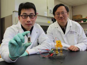 可生物降解的高能糖电池问世 有望替代传统电池