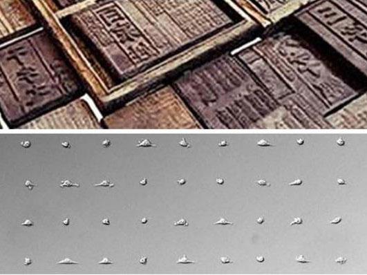 """""""活字印刷""""般的新型BloC细胞打印技术"""