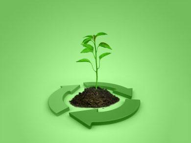 生物质动力汽车的能源效率