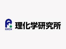 日本理化学研究所深陷学术造假漩涡