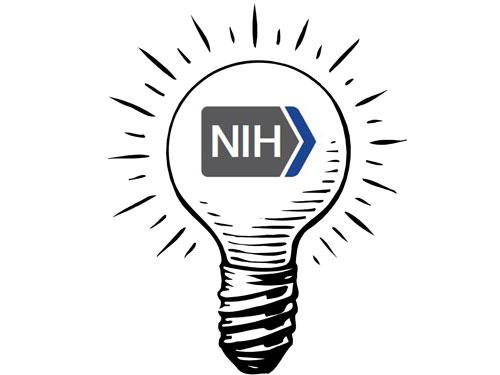 2013财年NIH资助情况简析