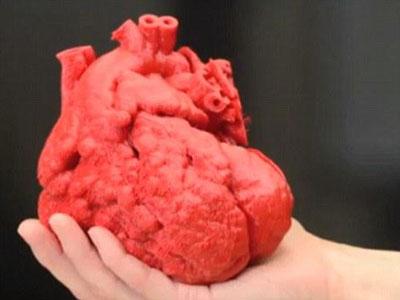 科学家称五年内将3D打印人类心脏