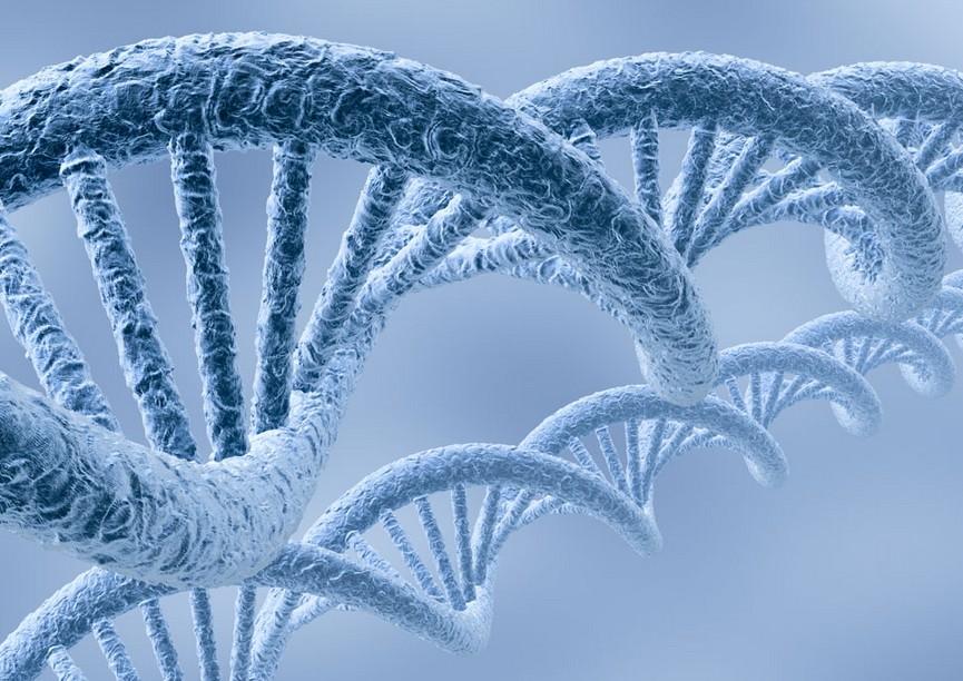 我国基因检测产业如何发展?