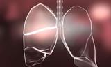 新生儿过度使用抗生素可能导致肺防御功能永久损害