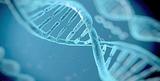 基因与环境相互作用增加类风湿关节炎风险