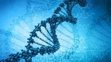 Science专访:基因驱动,消除疟疾