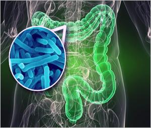 急性肠功能衰竭治疗:欧洲临床营养及代谢协会意见书