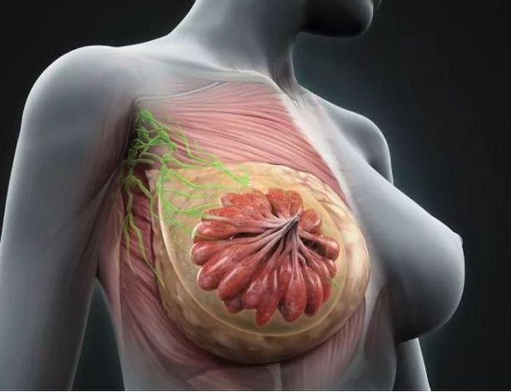 数一数百年来乳腺癌外科发展的重要转折点