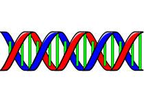 计算生物学家为分析解释遗传测序数据开发平台