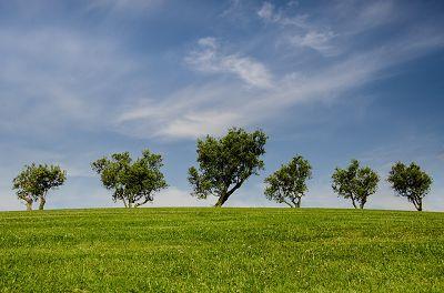 环境是如何影响我们的健康的?