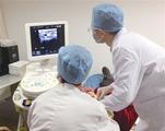 常规超声及弹性成像在浅表淋巴结定性诊断中的研究进展