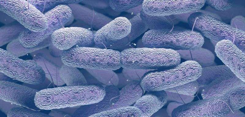 研究发现控制耐药菌传播的关键在于医院!