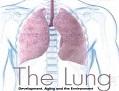 结缔组织病相关肺动脉高压的预后