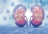 肾小管酸中毒的诊疗进展