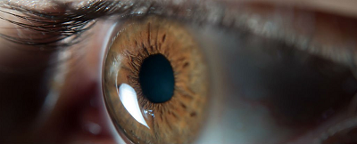 TheLancet:病毒感染能够拯救老年人的视觉退化!