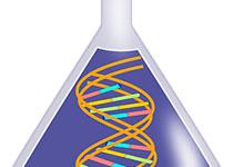 艾滋病研究取得最新突破:可利用基因编辑技术移除动物体内的艾滋病病毒